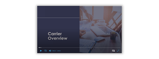 carrieroverview